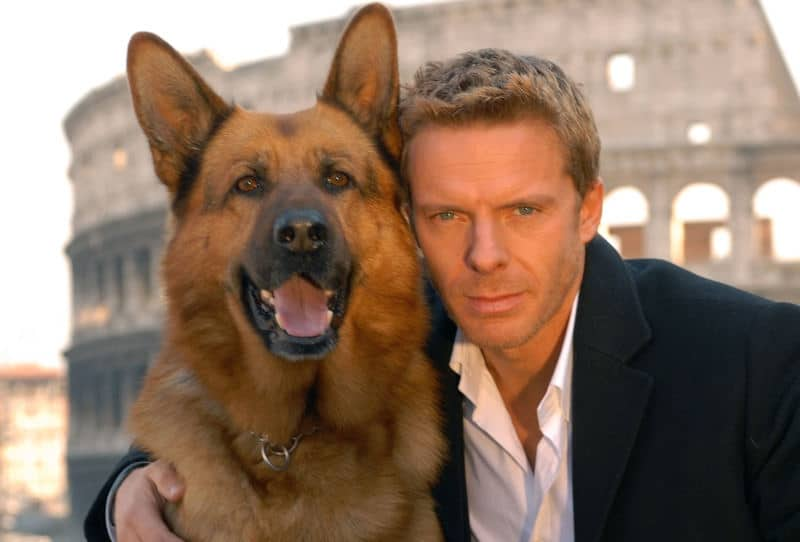 Movies Featuring German Shepherds