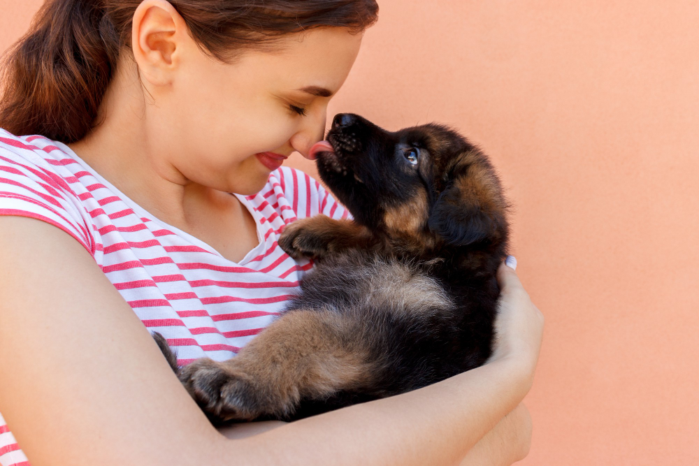 """Featured image for """"A Complete Guide: Bringing Your New Puppy Home for the First Time"""""""