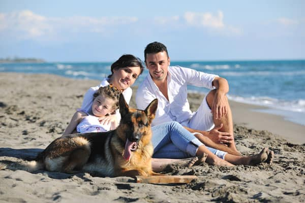 family-with-protection-dog-on-beach